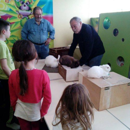 Atelier-pedagogique2